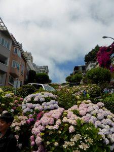 Die Lombard Street von unten, man kann die Serpentinen erahnen.