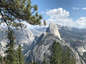 Half Dome von Washburn Point aus.